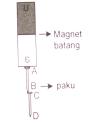 Paku diinduksi oleh sebuah magnet batang